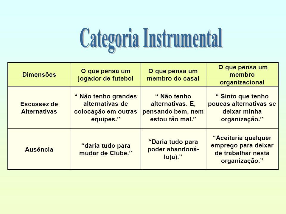 Categoria Instrumental