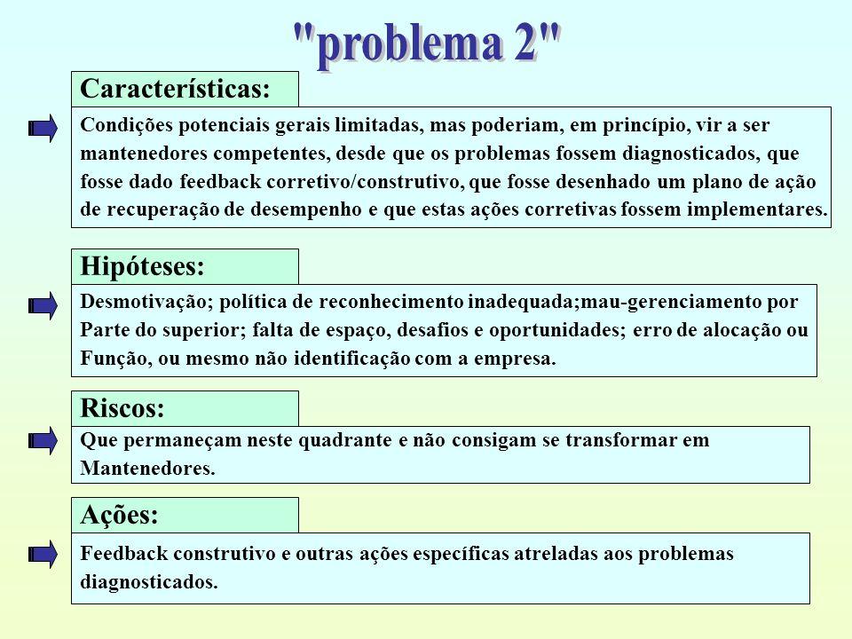problema 2 Características: Hipóteses: Riscos: Ações: