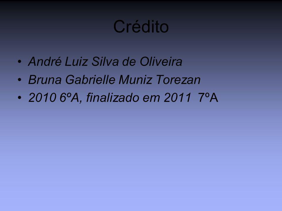 Crédito André Luiz Silva de Oliveira Bruna Gabrielle Muniz Torezan