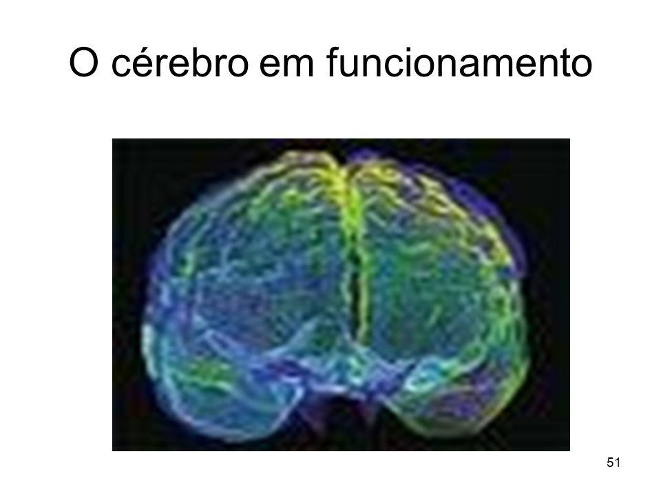 O cérebro em funcionamento