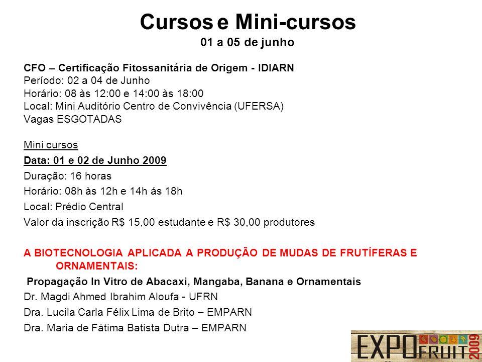 Cursos e Mini-cursos 01 a 05 de junho