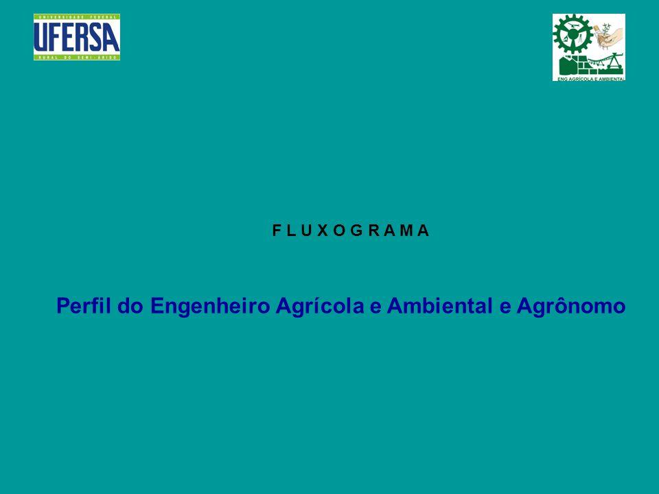 Perfil do Engenheiro Agrícola e Ambiental e Agrônomo