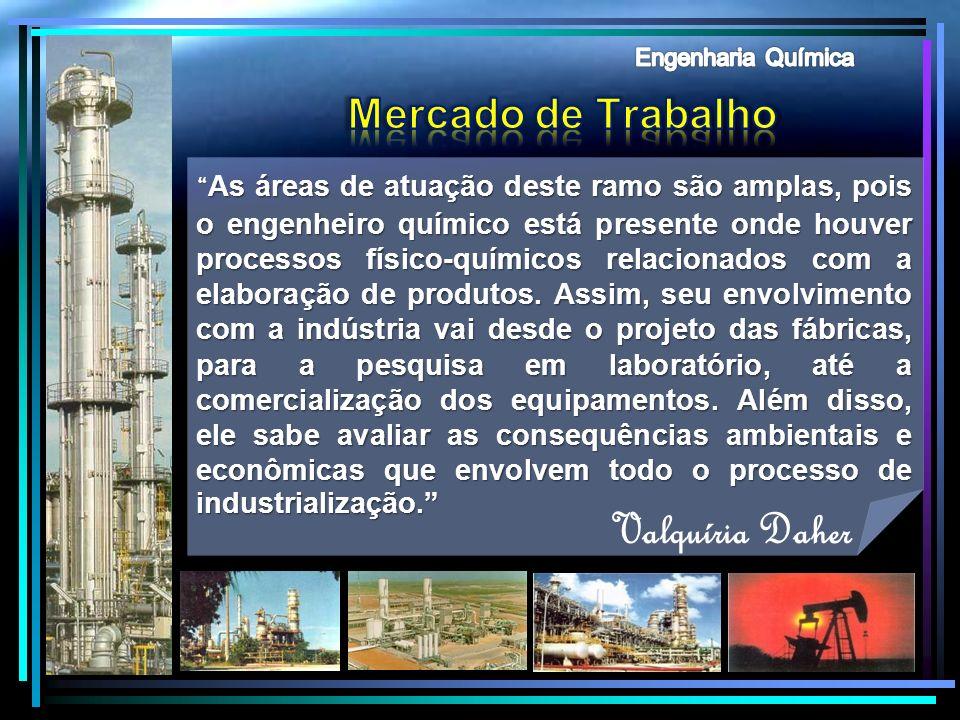 Valquíria Daher Mercado de Trabalho