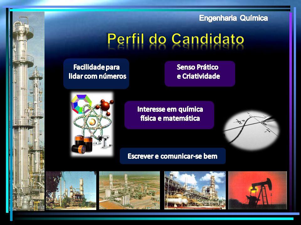 Perfil do Candidato Engenharia Química Facilidade para