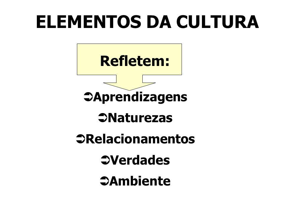 ELEMENTOS DA CULTURA Refletem: Aprendizagens Naturezas Relacionamentos