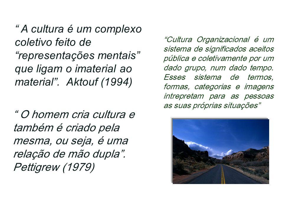 A cultura é um complexo coletivo feito de representações mentais que ligam o imaterial ao material . Aktouf (1994)