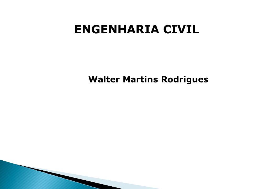 Walter Martins Rodrigues