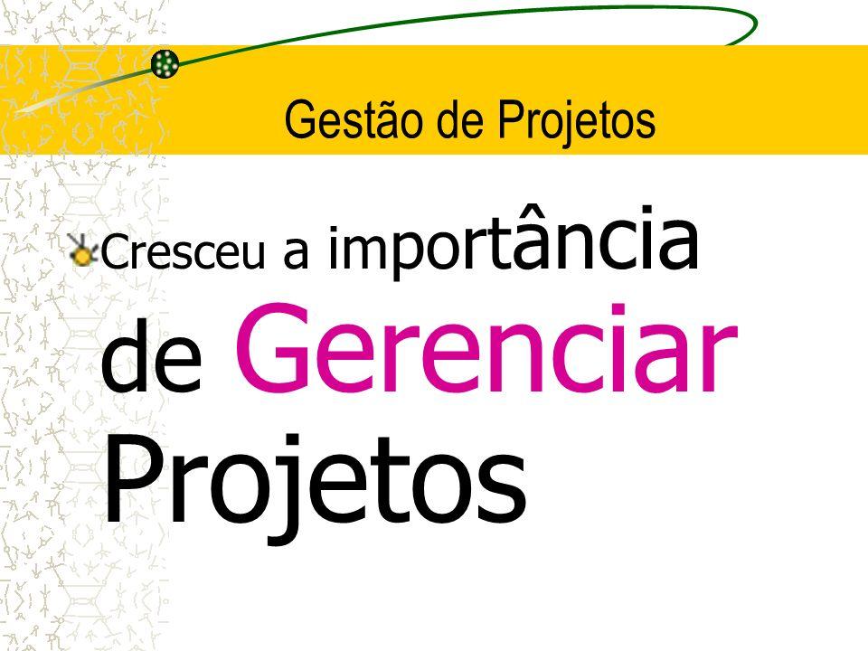 Gestão de Projetos Cresceu a importância de Gerenciar Projetos