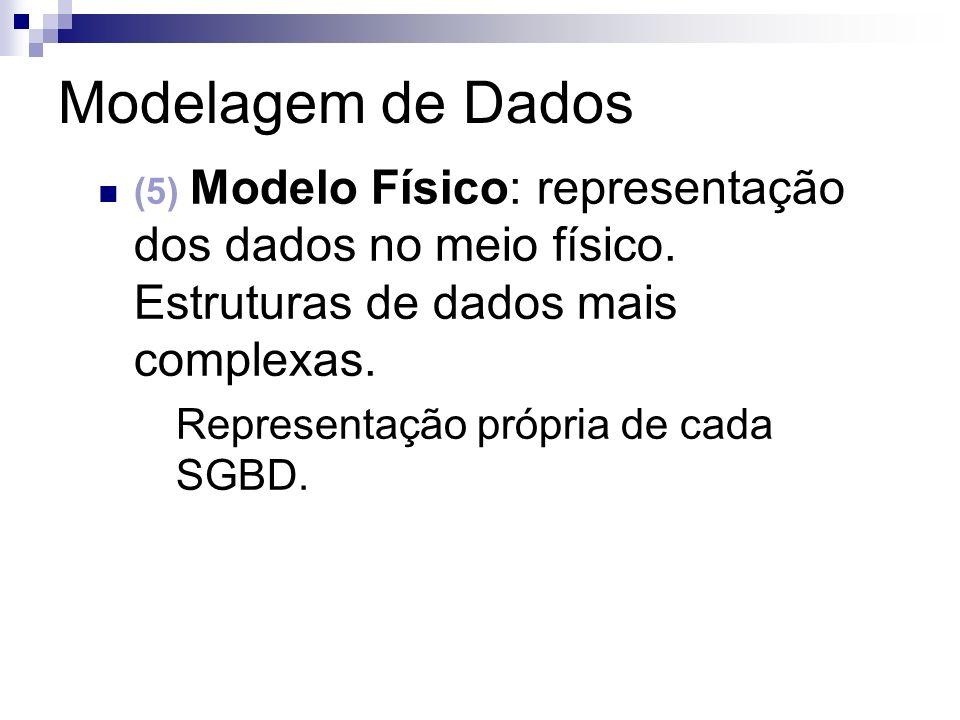 Modelagem de Dados Representação própria de cada SGBD.