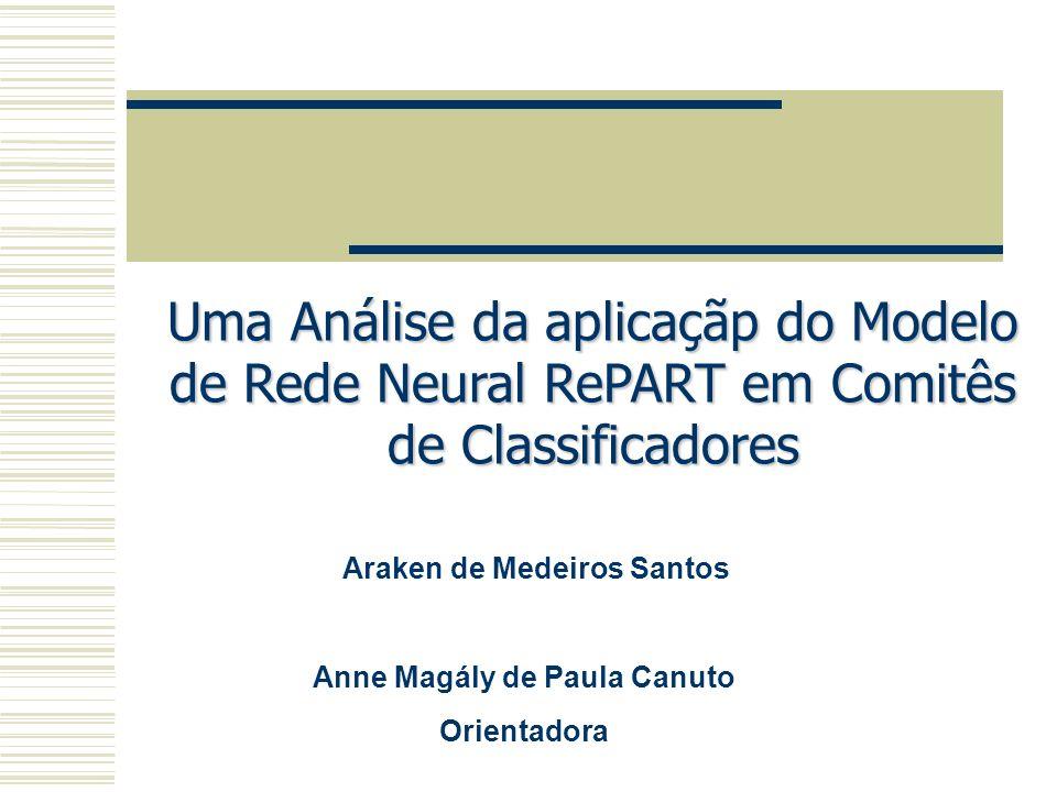 Araken de Medeiros Santos Anne Magály de Paula Canuto