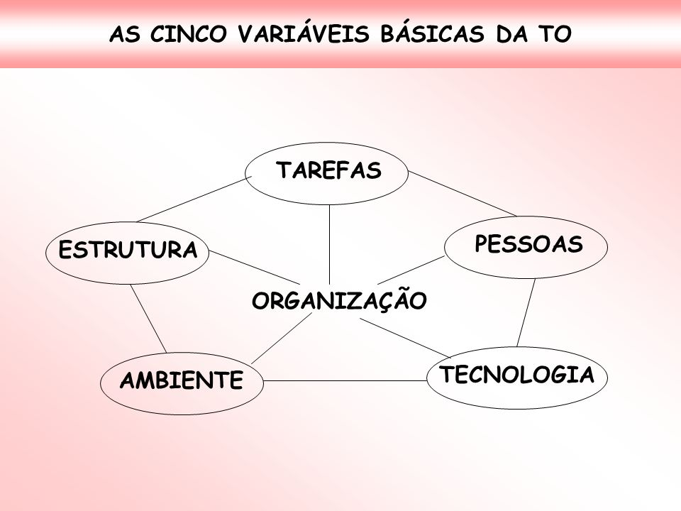 AS CINCO VARIÁVEIS BÁSICAS DA TO