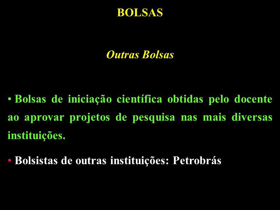 BOLSAS Outras Bolsas. Bolsas de iniciação científica obtidas pelo docente ao aprovar projetos de pesquisa nas mais diversas instituições.