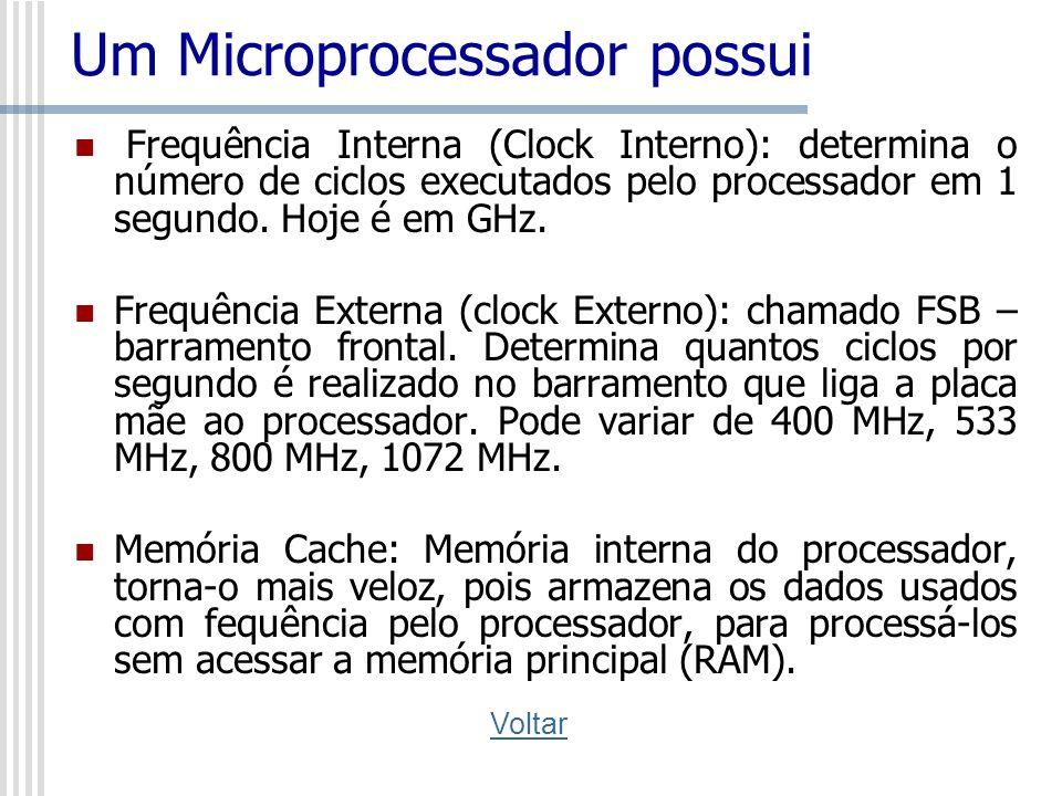 Um Microprocessador possui