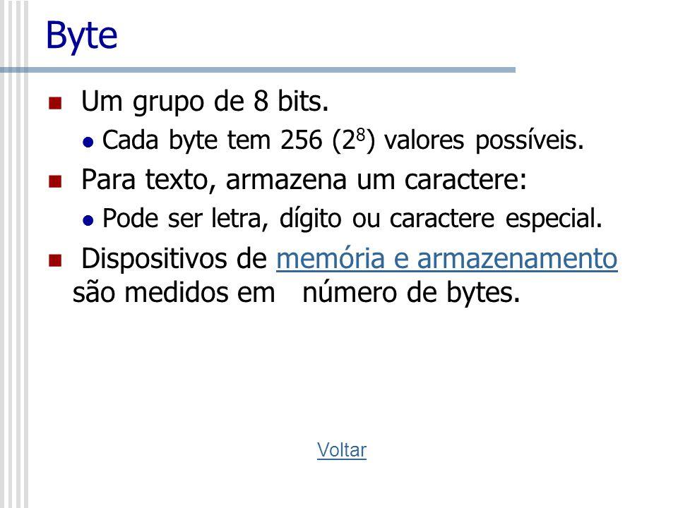 Byte Um grupo de 8 bits. Para texto, armazena um caractere: