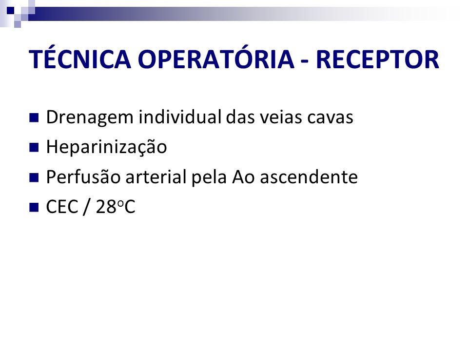 TÉCNICA OPERATÓRIA - RECEPTOR