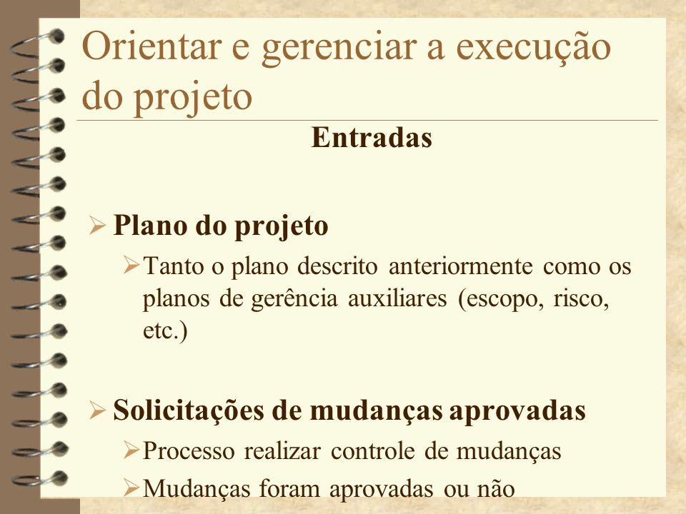 Orientar e gerenciar a execução do projeto