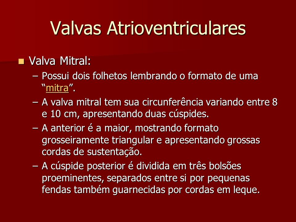 Valvas Atrioventriculares