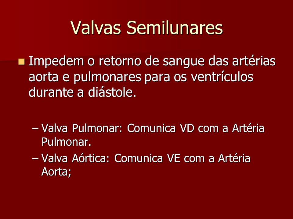 Valvas Semilunares Impedem o retorno de sangue das artérias aorta e pulmonares para os ventrículos durante a diástole.