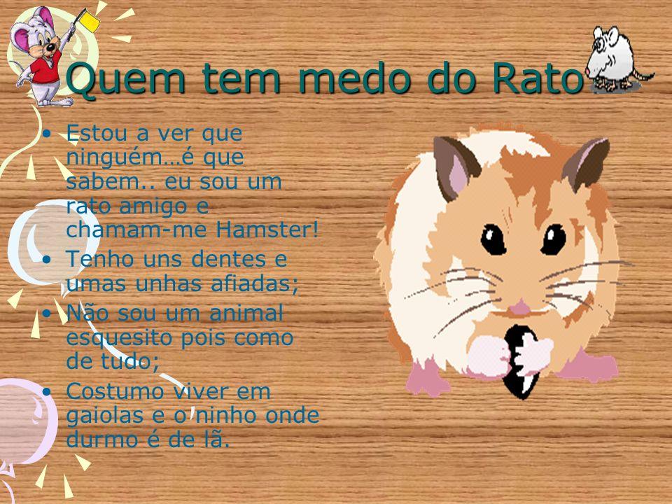 Quem tem medo do Rato Estou a ver que ninguém…é que sabem.. eu sou um rato amigo e chamam-me Hamster!