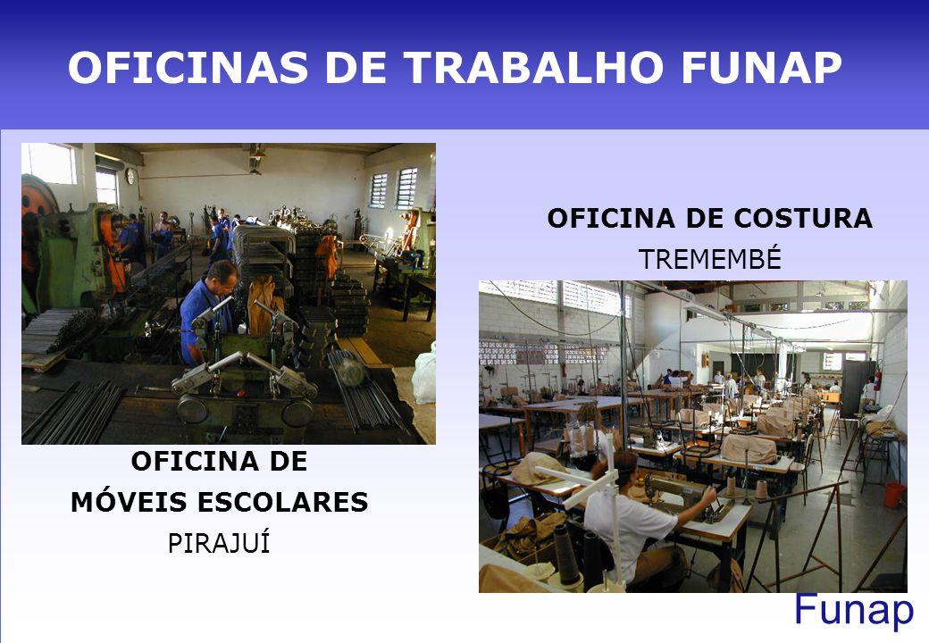 OFICINAS DE TRABALHO FUNAP