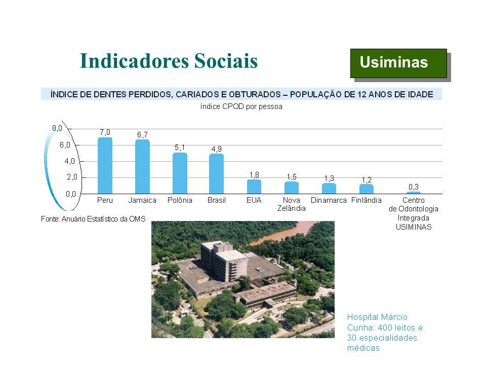 Indicadores Sociais Usiminas