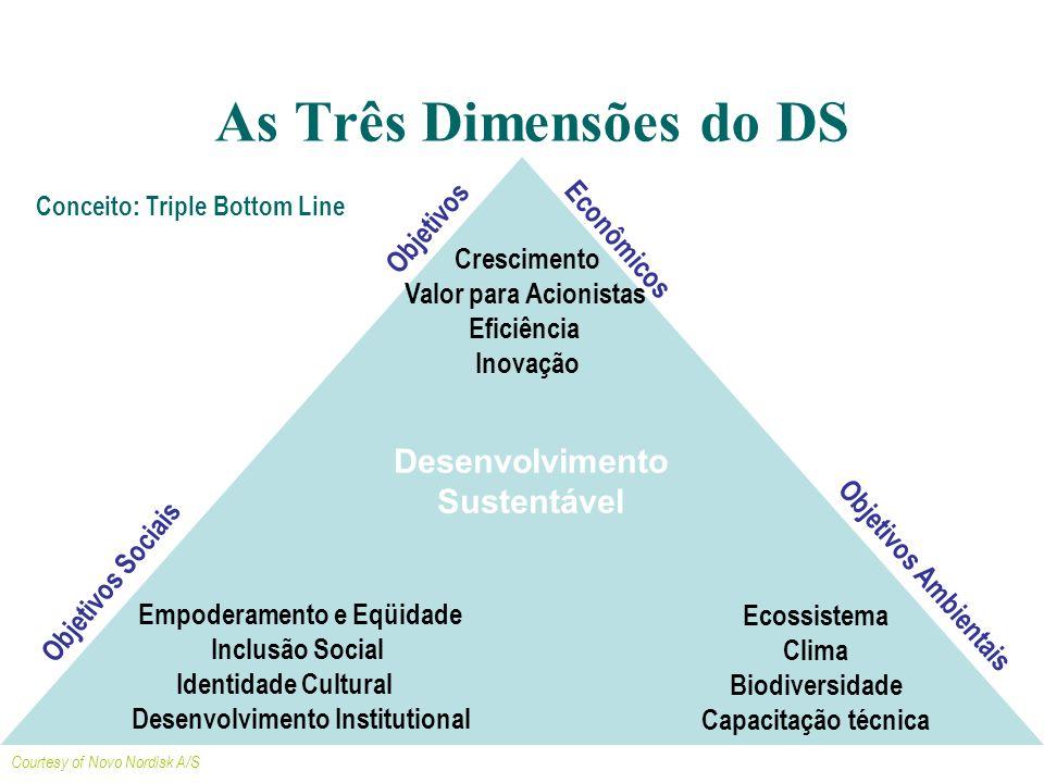 Empoderamento e Eqüidade Desenvolvimento Institutional