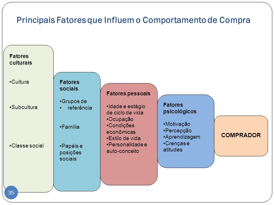 Principais Fatores que Influem o Comportamento de Compra