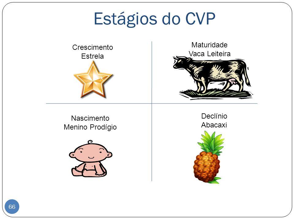 Estágios do CVP Maturidade Crescimento Vaca Leiteira Estrela Declínio