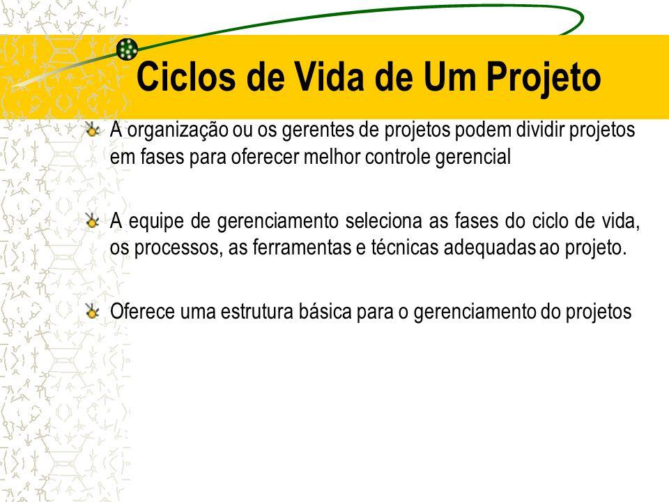 Ciclos de Vida de Um Projeto