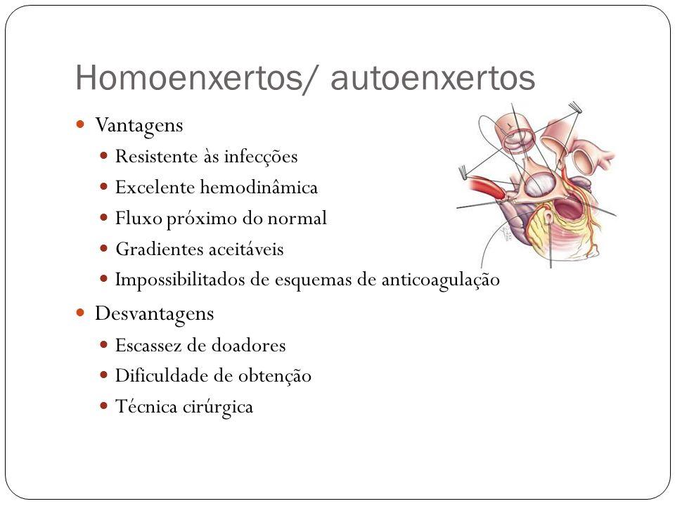 Homoenxertos/ autoenxertos