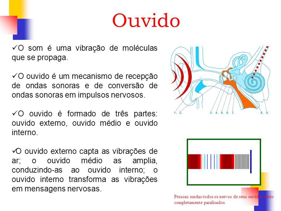Ouvido O som é uma vibração de moléculas que se propaga.