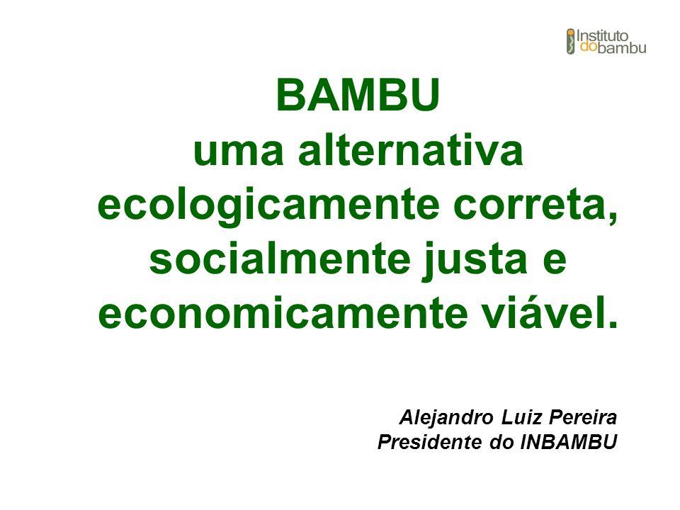 BAMBU uma alternativa ecologicamente correta, socialmente justa e economicamente viável.