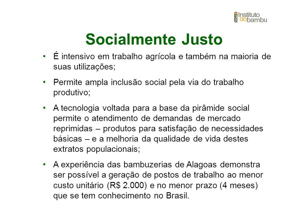 Socialmente Justo É intensivo em trabalho agrícola e também na maioria de suas utilizações;
