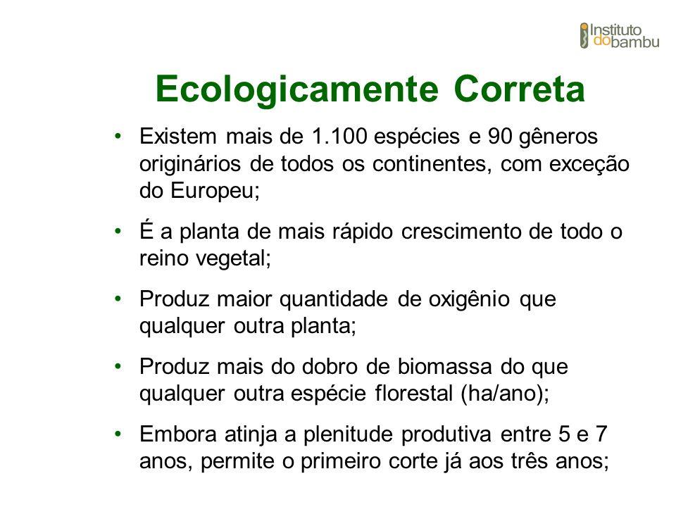 Ecologicamente Correta