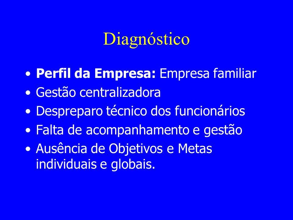 Diagnóstico Perfil da Empresa: Empresa familiar Gestão centralizadora