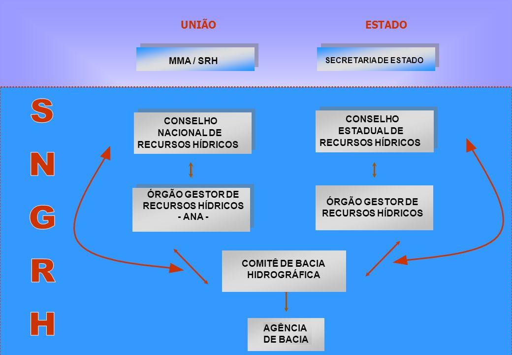 ÓRGÃO GESTOR DE RECURSOS HÍDRICOS ÓRGÃO GESTOR DE RECURSOS HÍDRICOS