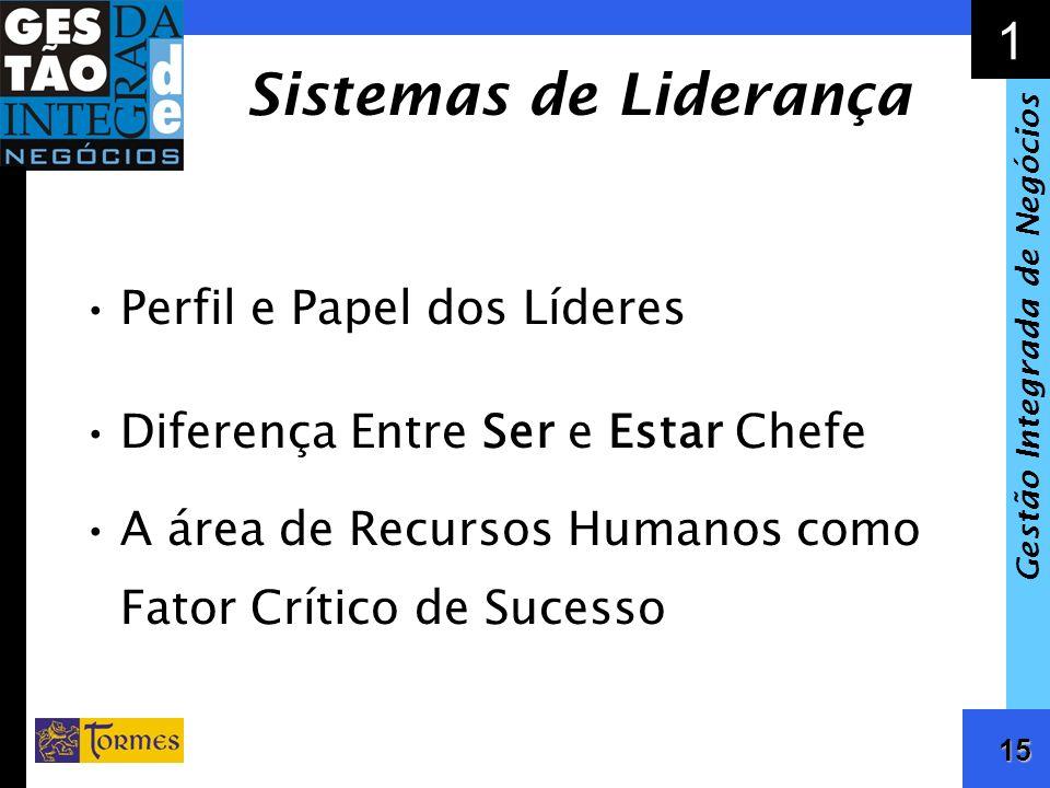Sistemas de Liderança Perfil e Papel dos Líderes