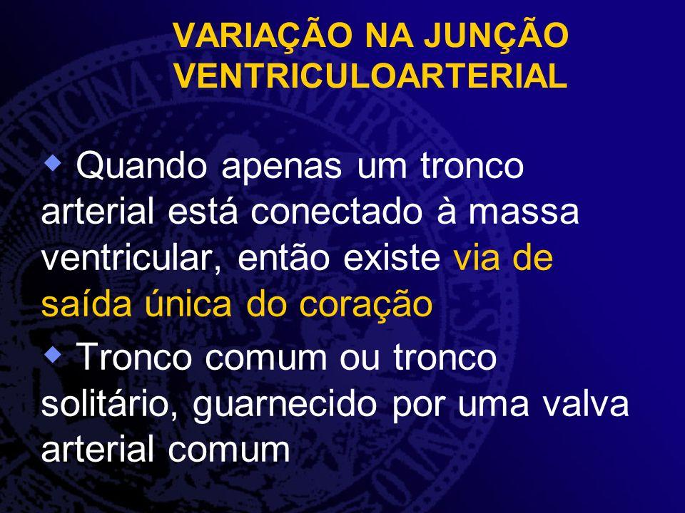 VARIAÇÃO NA JUNÇÃO VENTRICULOARTERIAL