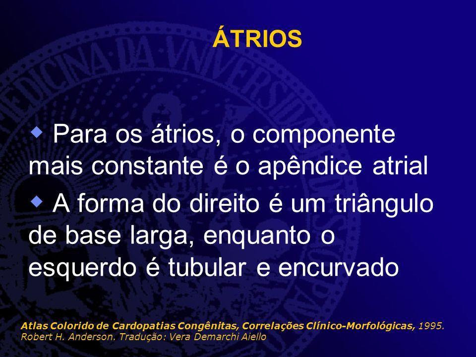 Para os átrios, o componente mais constante é o apêndice atrial