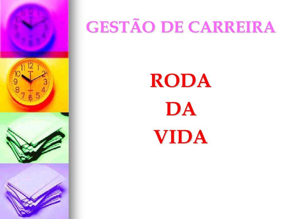 GESTÃO DE CARREIRA RODA DA VIDA
