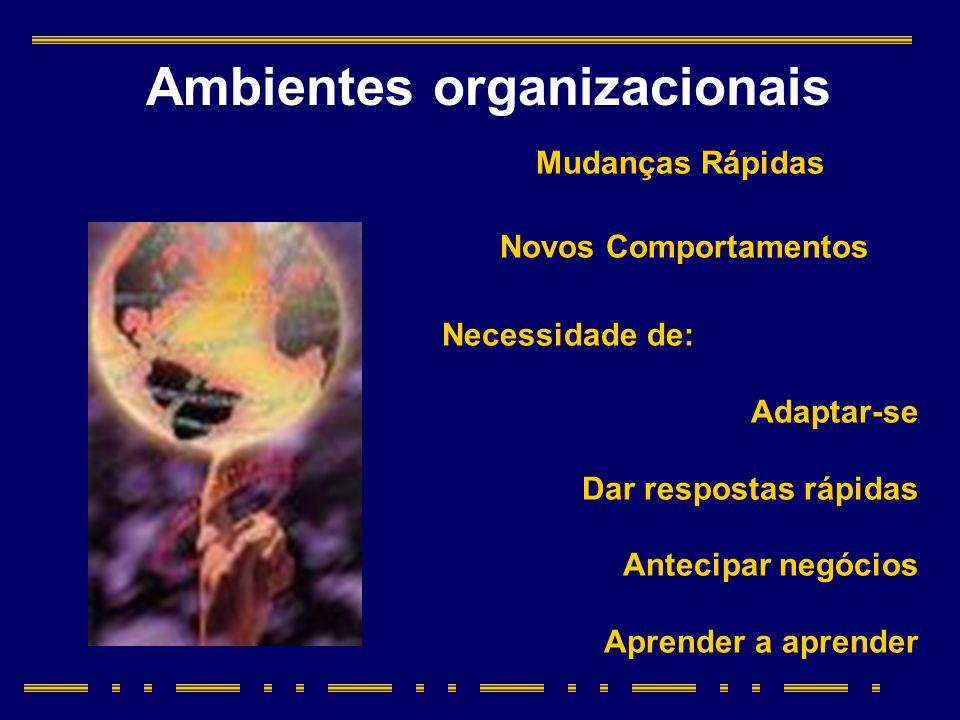 Ambientes organizacionais