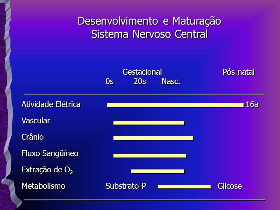 Desenvolvimento e Maturação Sistema Nervoso Central