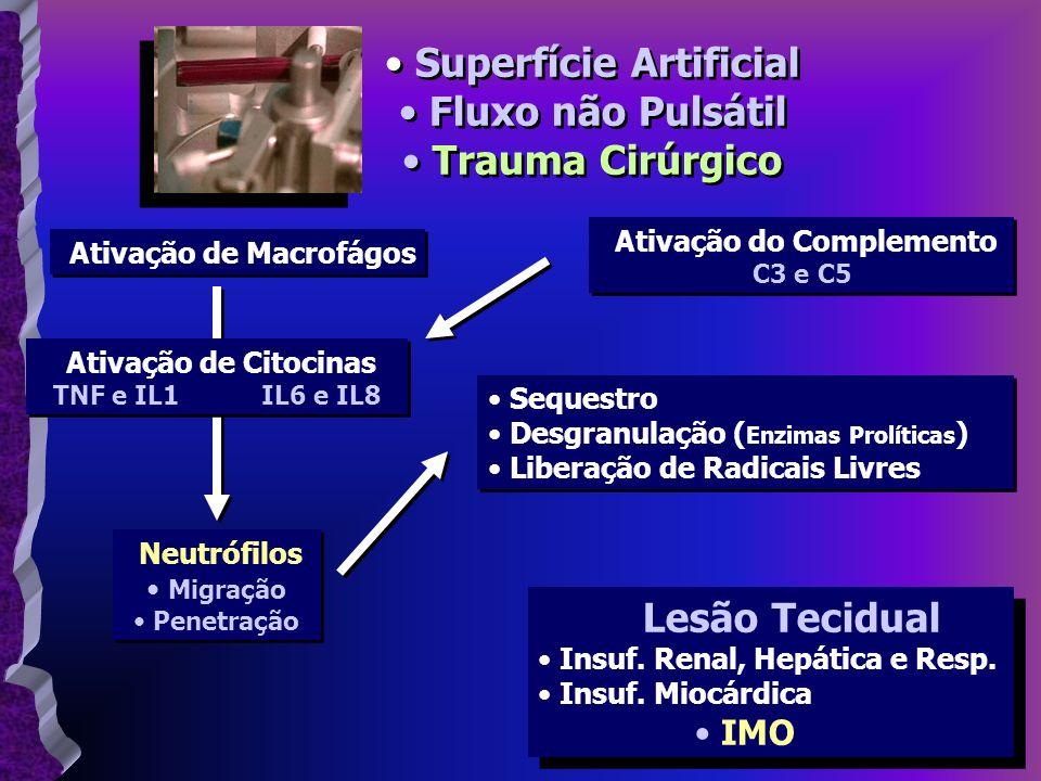 Superfície Artificial Ativação do Complemento Ativação de Macrofágos