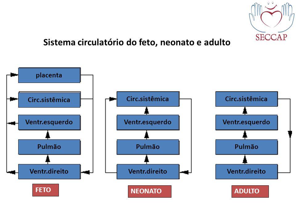 Sistema circulatório do feto, neonato e adulto