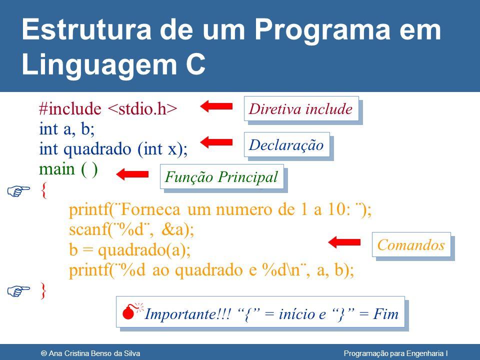 Estrutura de um Programa em Linguagem C