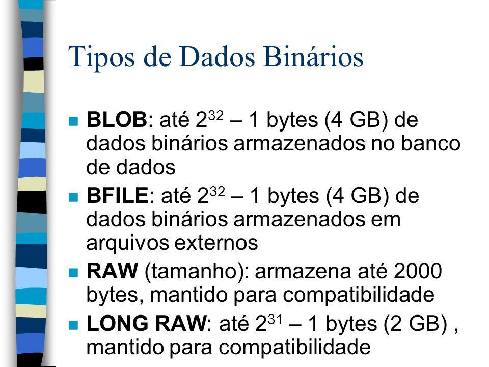 Tipos de Dados Binários