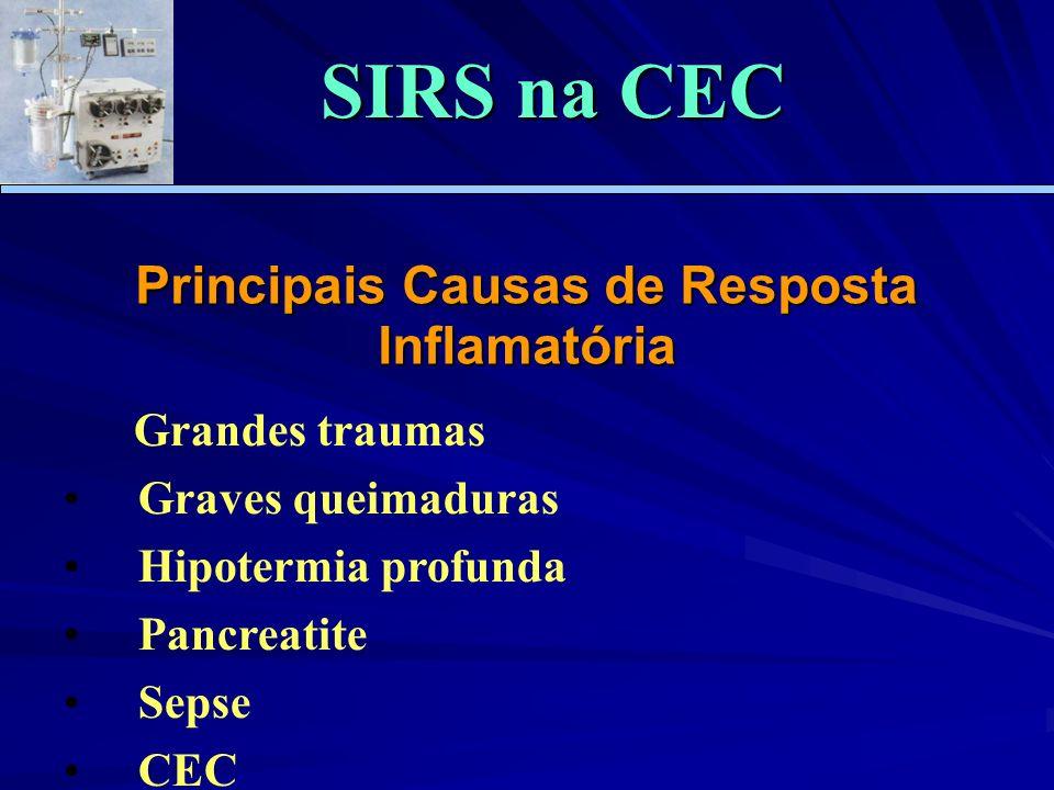 Principais Causas de Resposta Inflamatória