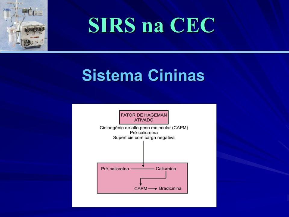 SIRS na CEC Sistema Cininas