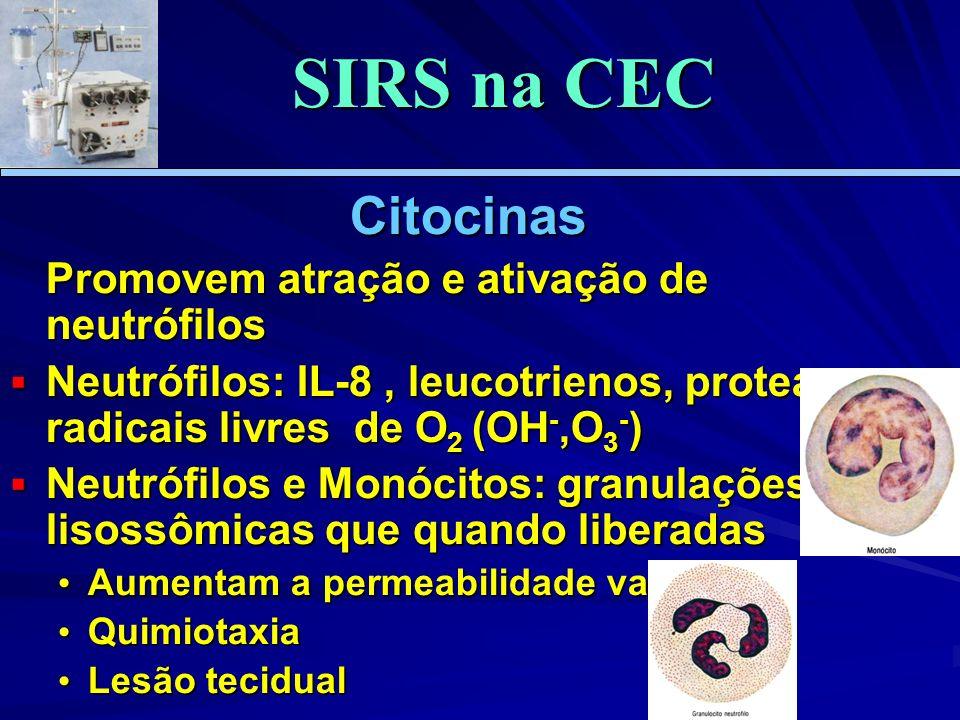SIRS na CEC Citocinas Promovem atração e ativação de neutrófilos