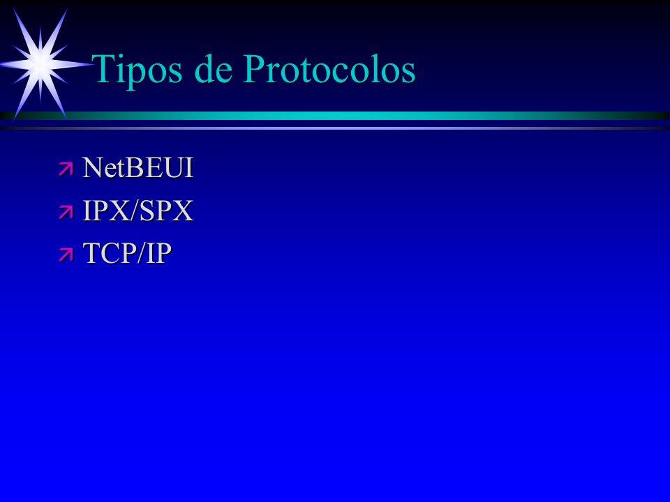 Tipos de Protocolos NetBEUI IPX/SPX TCP/IP